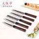 Osaka Chef's Knife